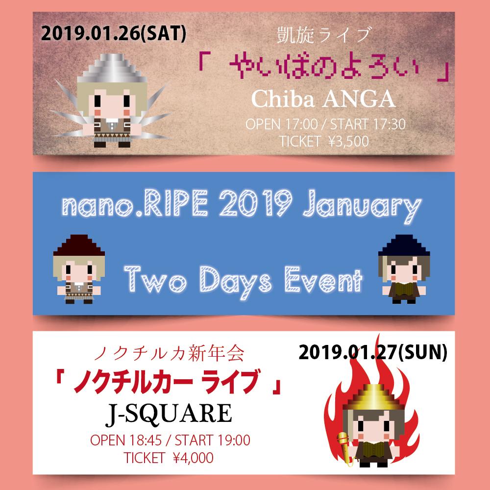 nano.RIPE 2019 ノクチルカ新年会「ノクチルカーライブ」